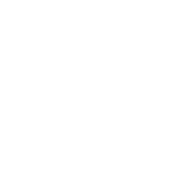 Tiny Homes International